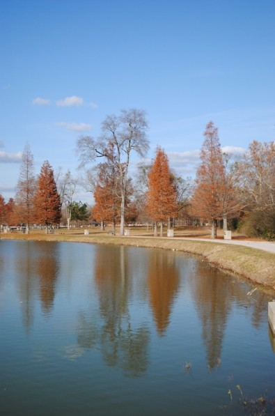 Reflections on East Lake Park