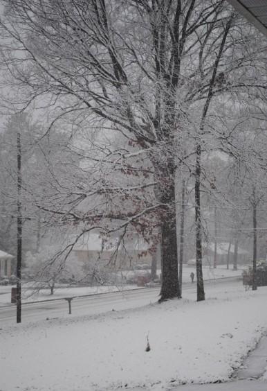 Birmingham Snow